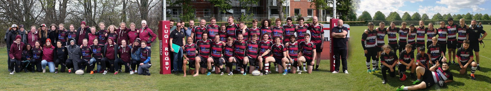 Lugi Lions Rugby Football Club